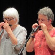 2017 MUHA Konzert Wolfhalden (26)
